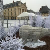 Patinoire de Dijon